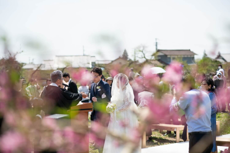 BRAPLA 野田 真奈美の画像3